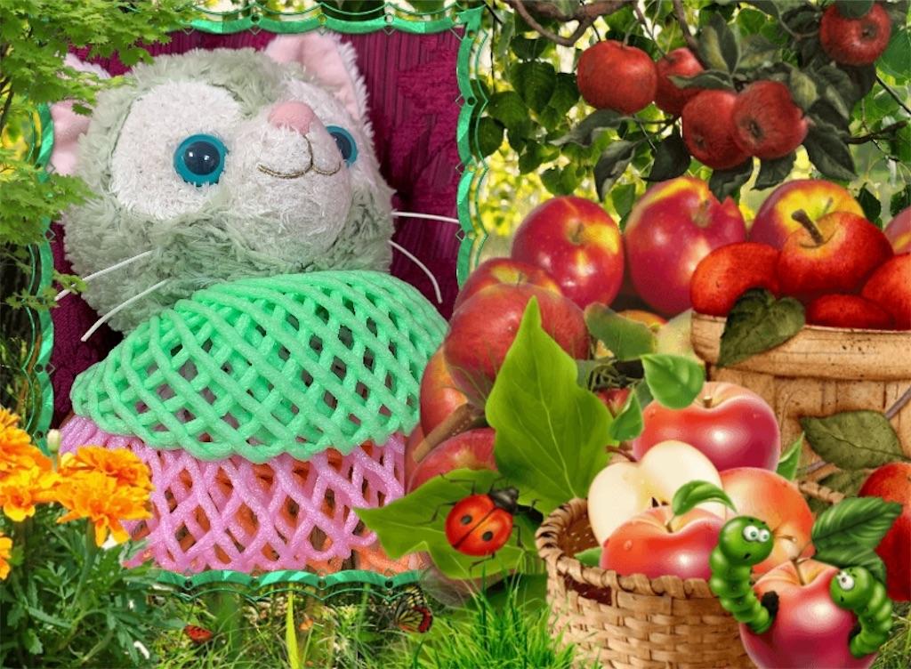 f:id:pinkstrawberryflavor:20210420114635j:plain