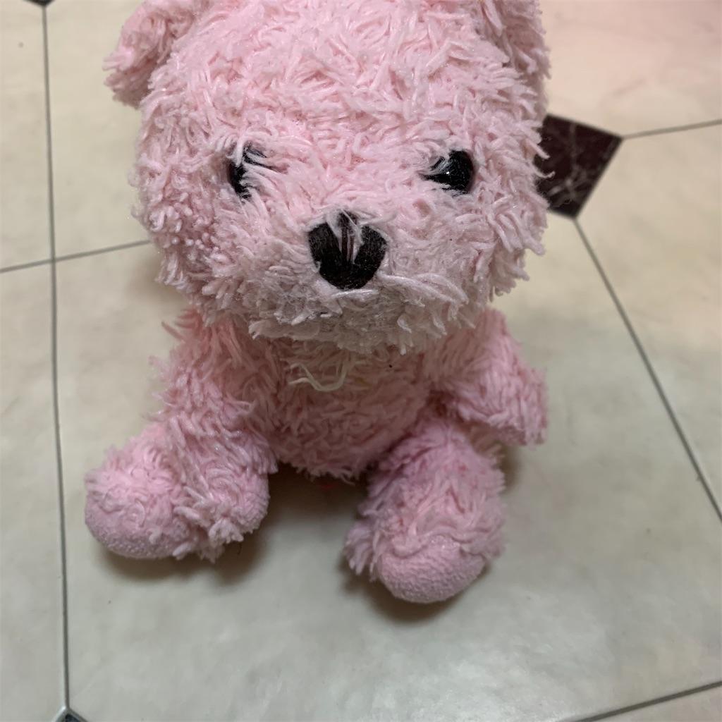 f:id:pinkstrawberryflavor:20210505092337j:plain