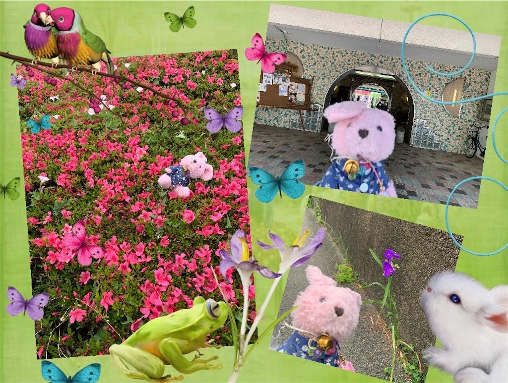 f:id:pinkstrawberryflavor:20210518102602j:plain