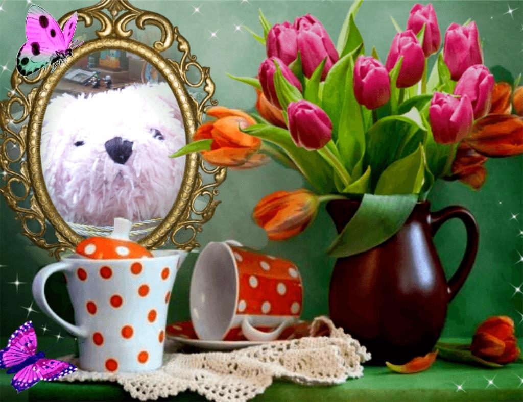f:id:pinkstrawberryflavor:20210605113043j:image