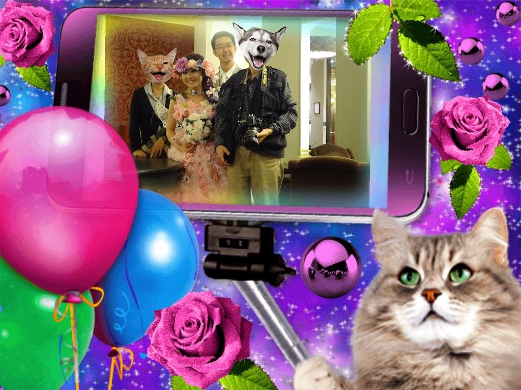 f:id:pinkstrawberryflavor:20210606112232j:image