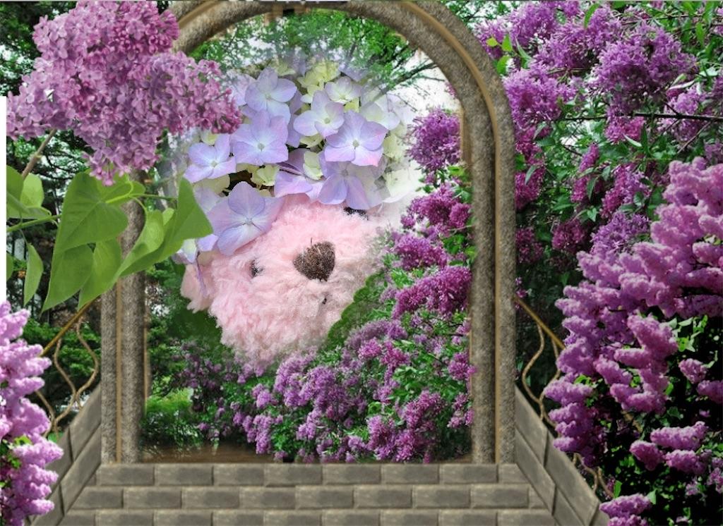 f:id:pinkstrawberryflavor:20210607100341j:image