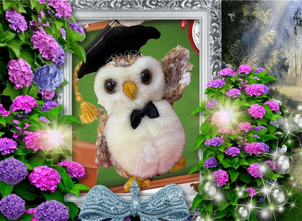 f:id:pinkstrawberryflavor:20210607101902j:image
