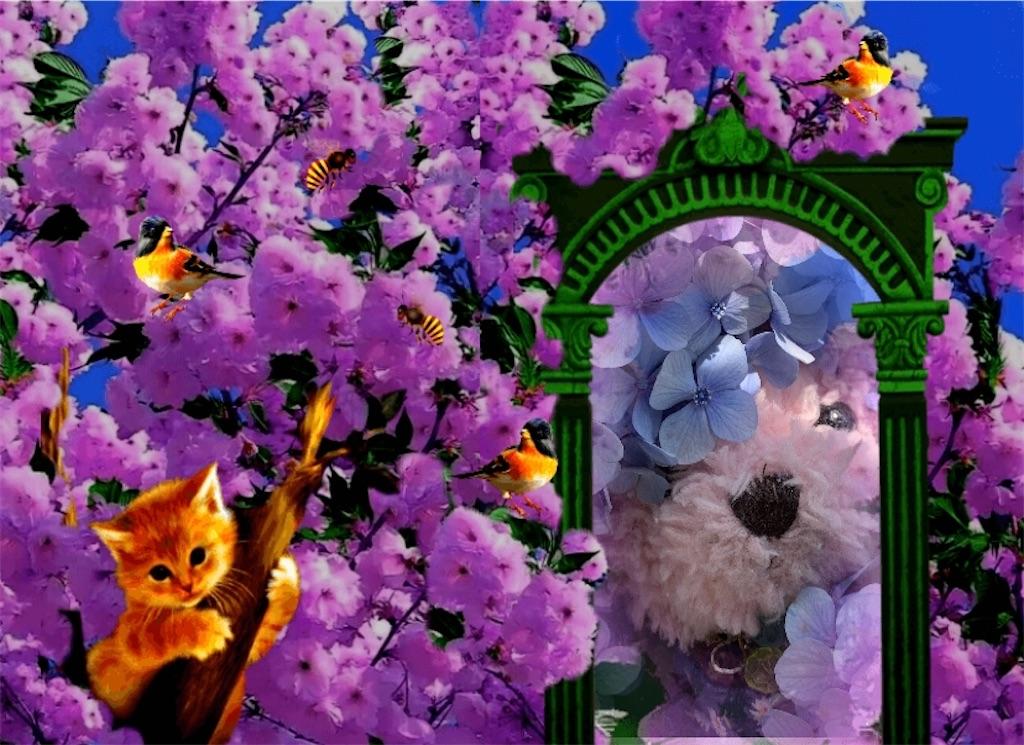 f:id:pinkstrawberryflavor:20210615001401j:image
