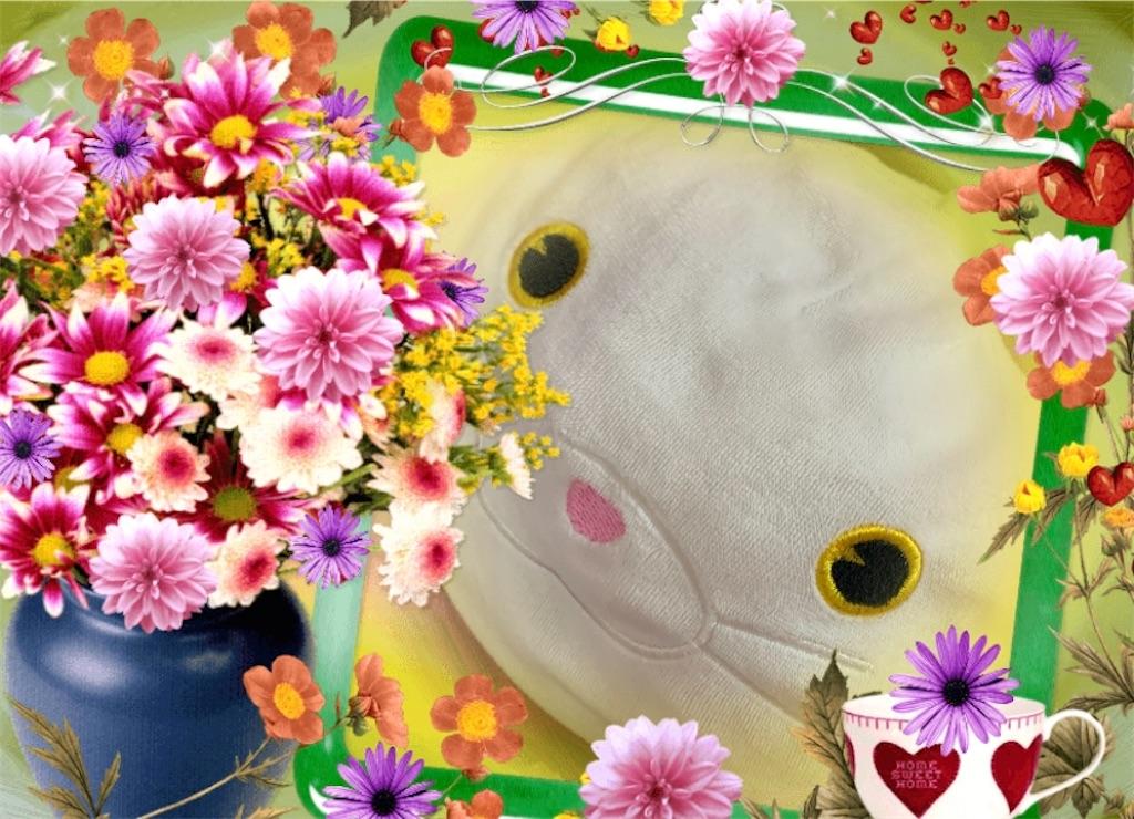f:id:pinkstrawberryflavor:20210920012900j:plain