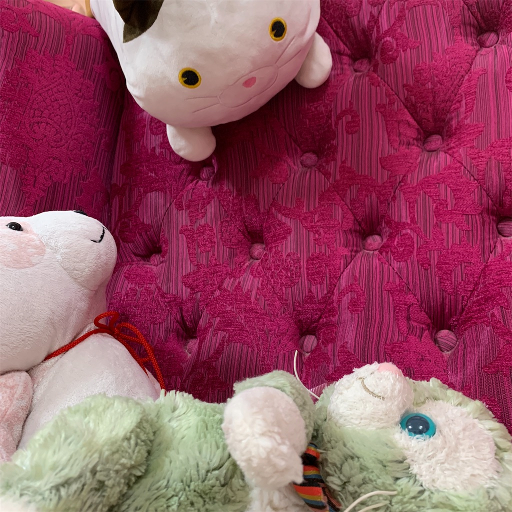 f:id:pinkstrawberryflavor:20210926112946j:image