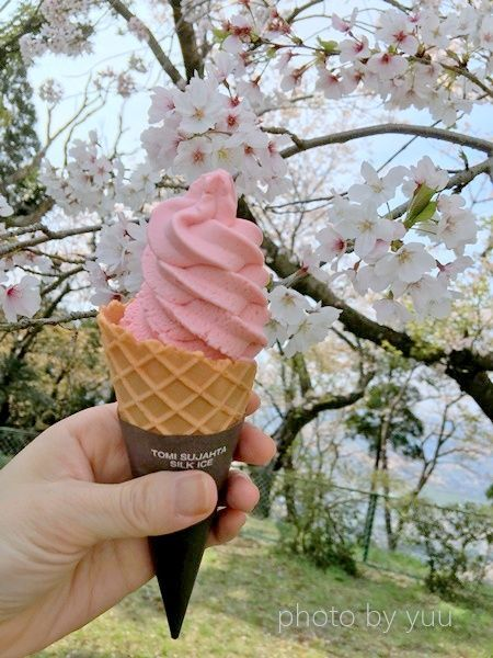 城山公園で買ったイチゴのソフトクリーム