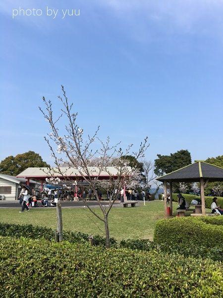 城山公園のゴーカート乗り場