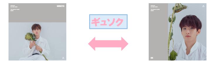 f:id:pinwheel23:20190222215809p:plain