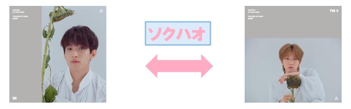 f:id:pinwheel23:20190222215828p:plain