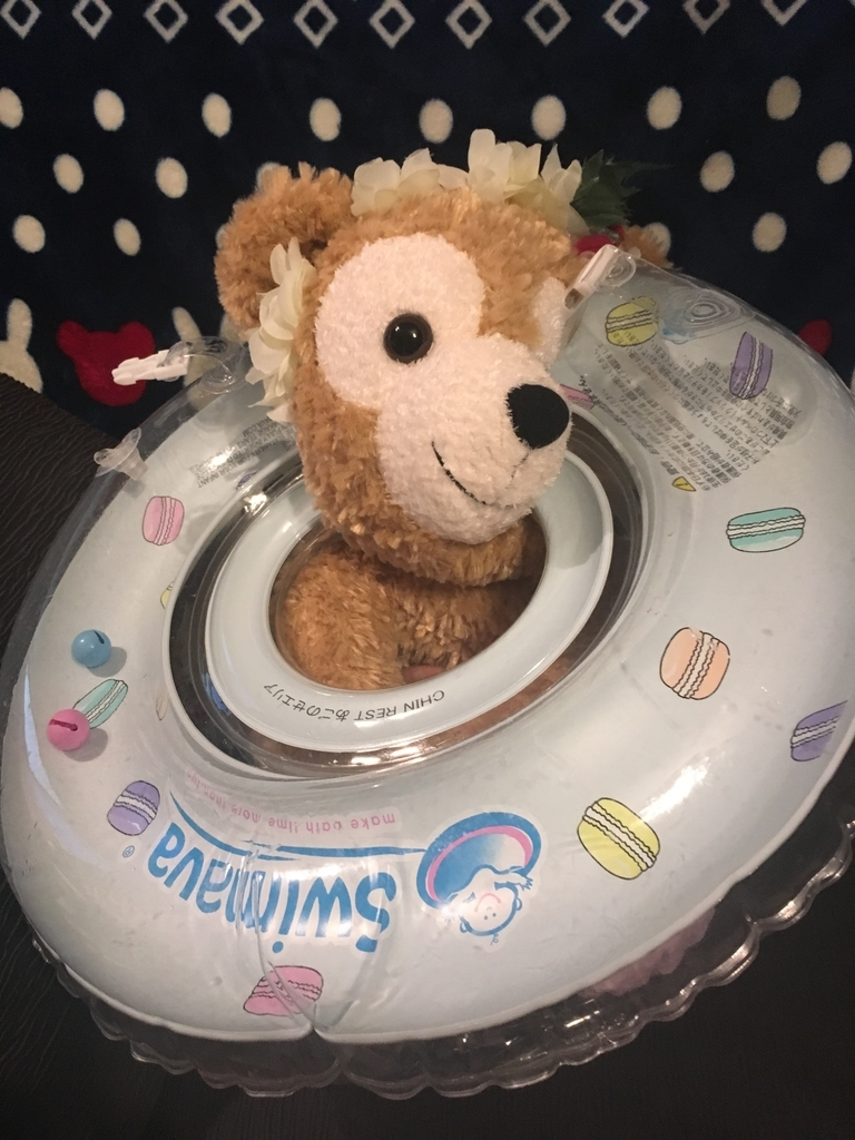 f:id:pinyveful:20181122212857j:plain