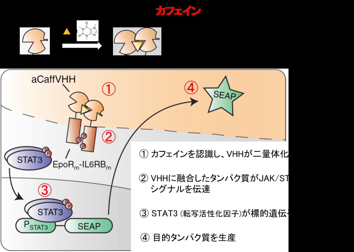 f:id:pioneer48:20200418225216p:plain