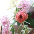 anniversary pink