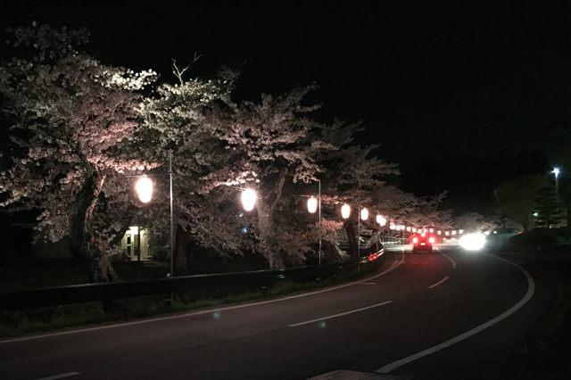 f:id:piro-yu:20170421211422j:plain