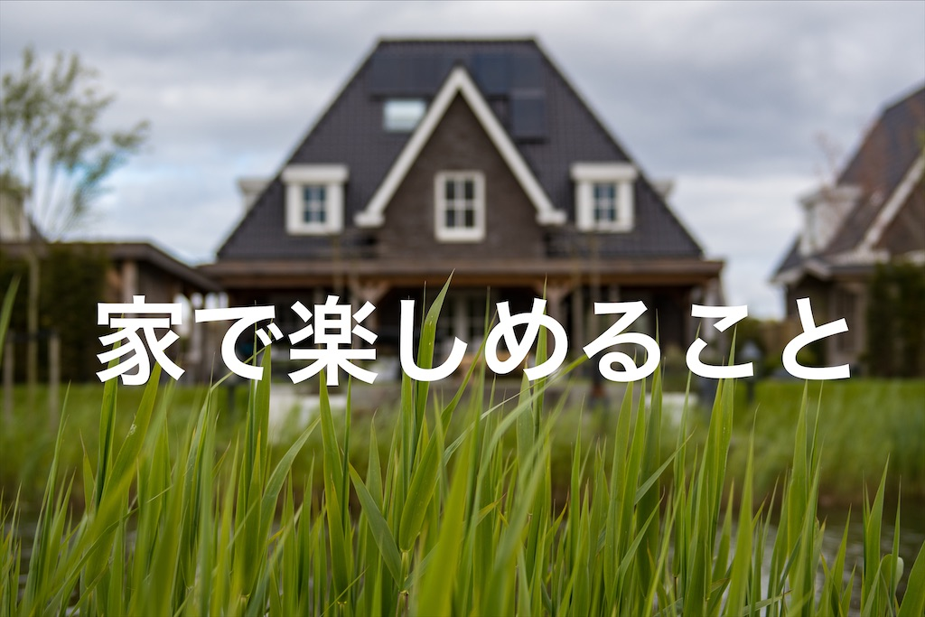 f:id:piromarukun:20200420203319j:image