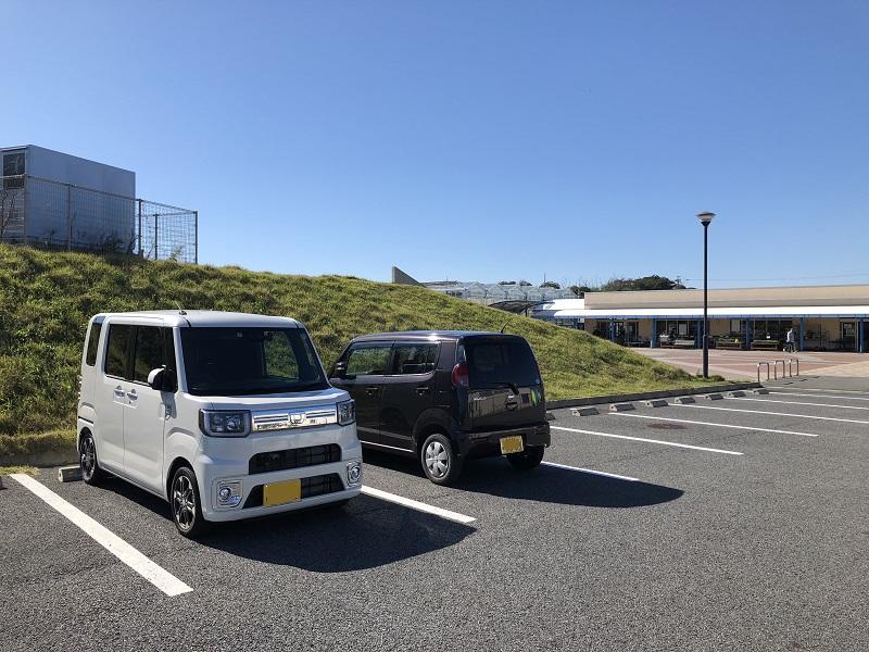 f:id:pisukechin:20190212192958j:plain