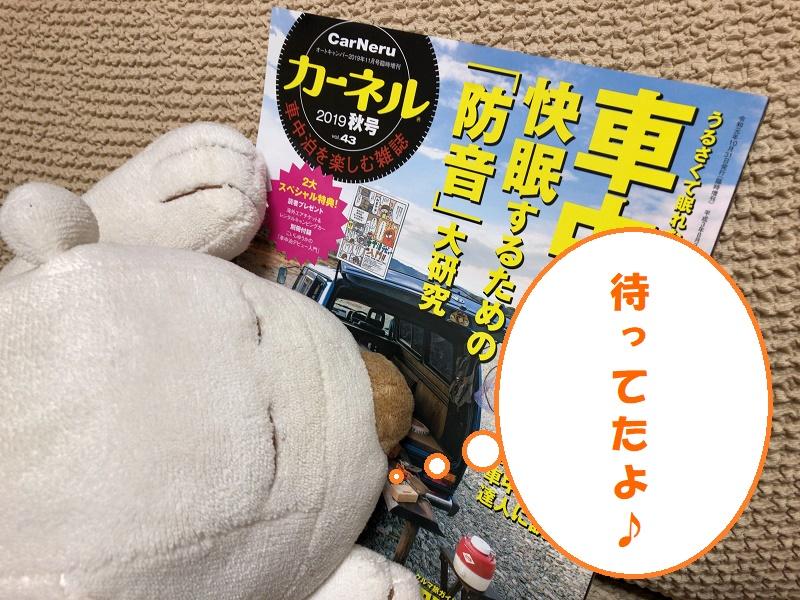 f:id:pisukechin:20191101190535j:plain