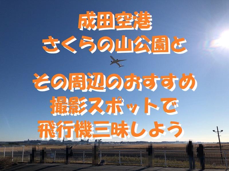 f:id:pisukechin:20191231080025j:plain