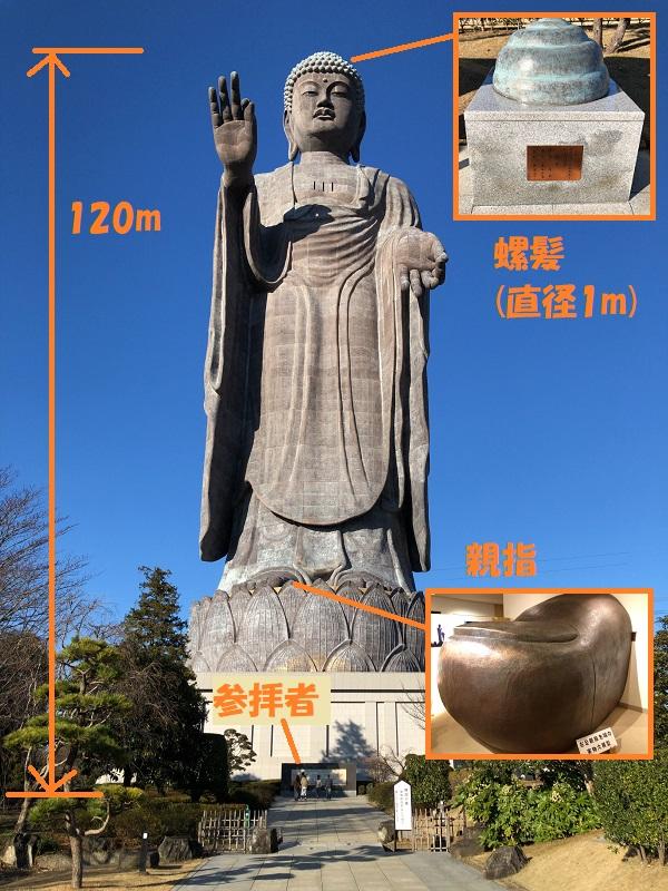 f:id:pisukechin:20200102091259j:plain