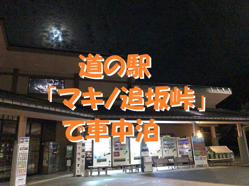 f:id:pisukechin:20200930204830j:plain