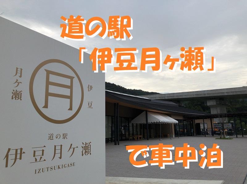 f:id:pisukechin:20201006223313j:plain