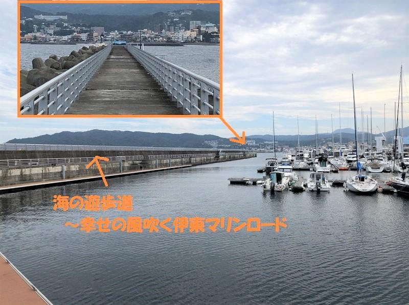 f:id:pisukechin:20201010124949j:plain