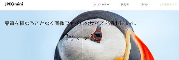 f:id:pisukechin:20201103221131j:plain