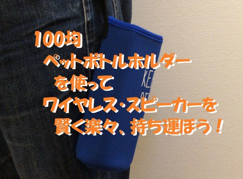 f:id:pisukechin:20210123155703j:plain