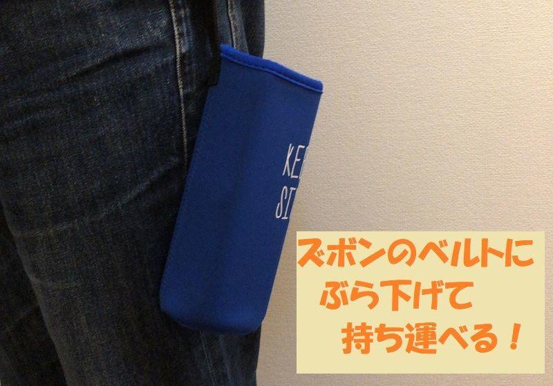 f:id:pisukechin:20210124004048j:plain