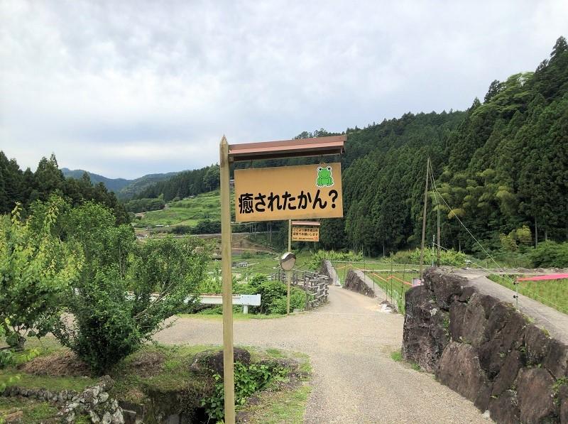 f:id:pisukechin:20210618191643j:plain