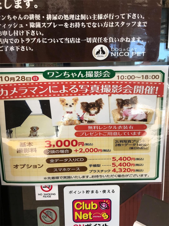 f:id:piyo3chihiro:20181004203143j:plain