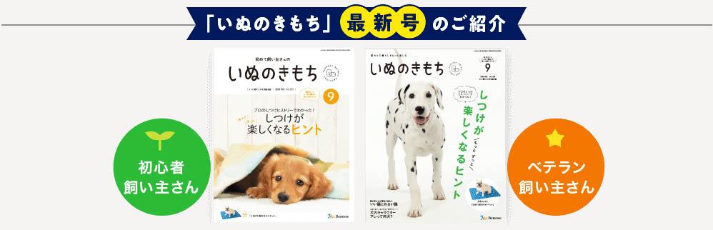 f:id:piyo3chihiro:20200917112429j:plain