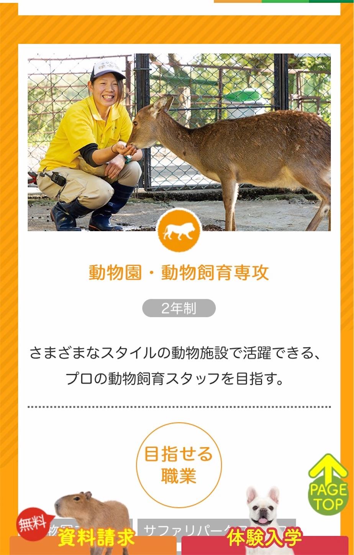 f:id:piyo3chihiro:20201019214622j:image