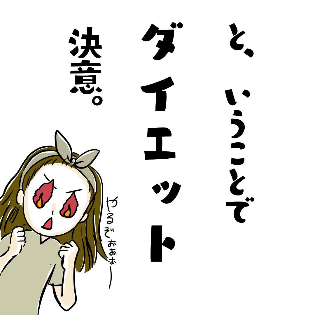 f:id:piyobiyori:20190502234258j:plain