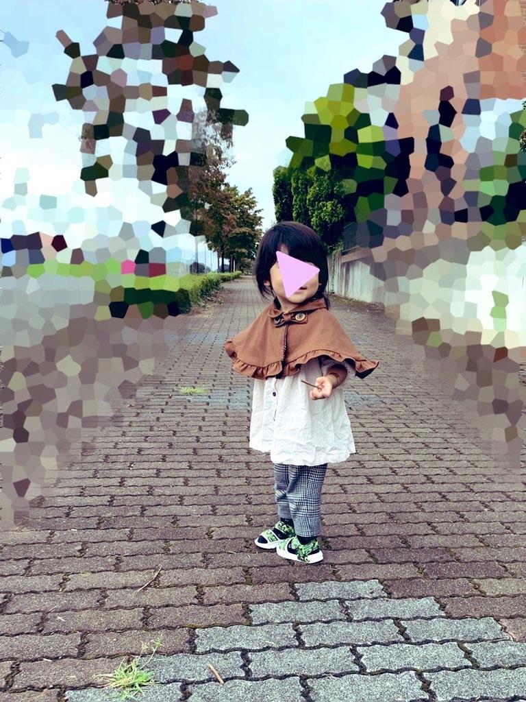 f:id:piyobu:20200921073245j:image