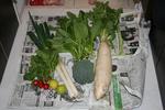 新鮮野菜.jpg