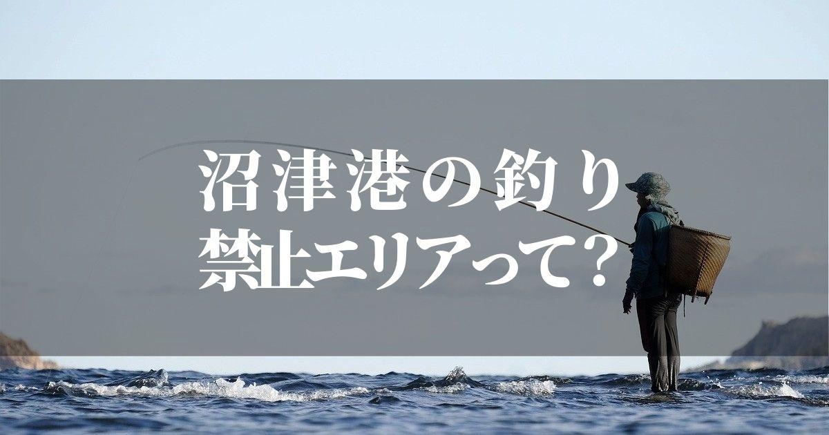 沼津港で釣りがしたい!でも釣りが禁止って本当なの?