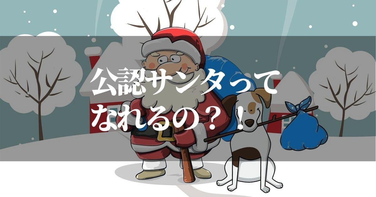 公認サンタクロースになるには?!【条件と試験があるなんて知ってた?!】