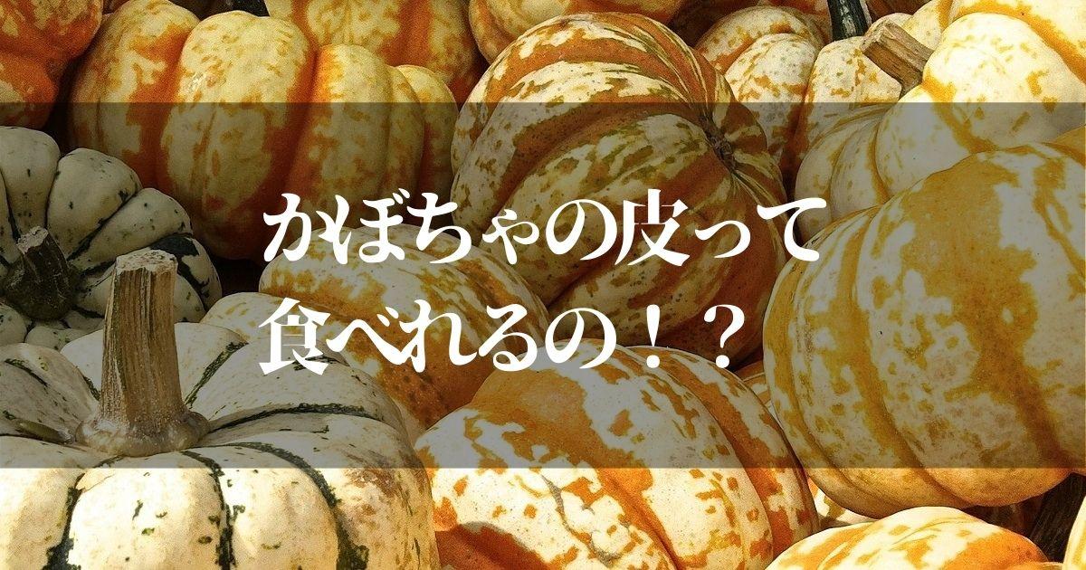 かぼちゃの皮って食べれるの?【意外に知らない食べなきゃ損する栄養素を紹介】