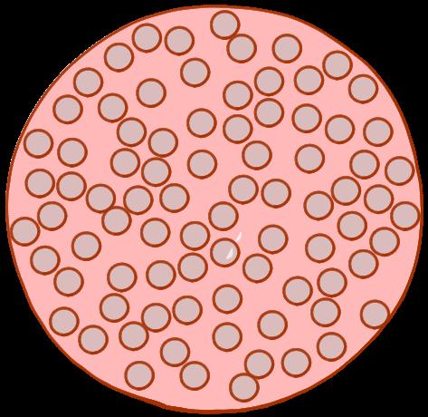 多孔性粒子