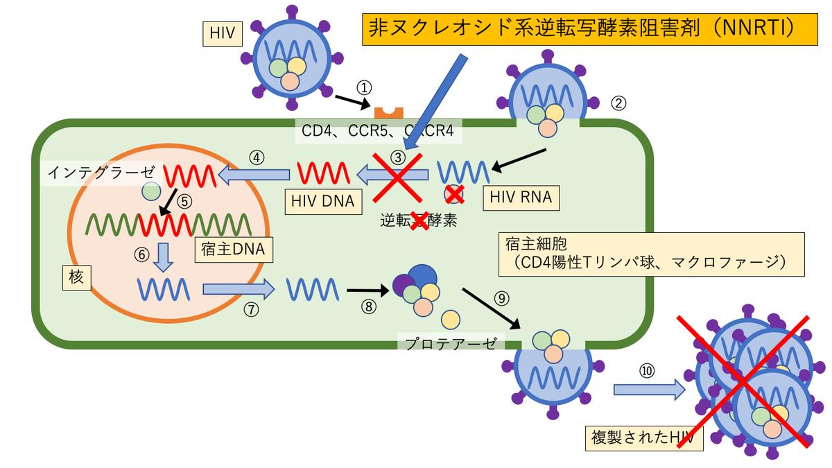 非ヌクレオシド系逆転写酵素阻害剤(NNRTI)