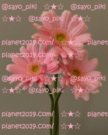 f:id:planet2019:20210517005357j:plain