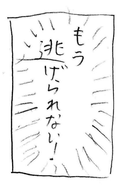 f:id:planterplantan:20170705213855j:image