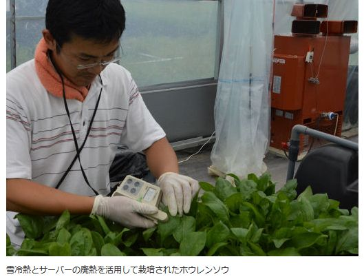 f:id:plantfactory:20161016184239j:plain