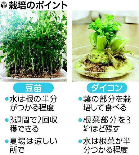 f:id:plantfactory:20161018071450j:plain