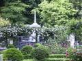 円通院バラ園