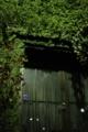 [千駄ヶ谷][【sce】夜景][建物][【obj】植物][FA 35mm F2]