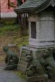 [TAMRON SP AF28-75mm F2.8][神田][神田明神][神社仏閣]