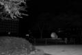 [上野][【sce】夜景][TAMRON SP AF28-75mm F2.8]