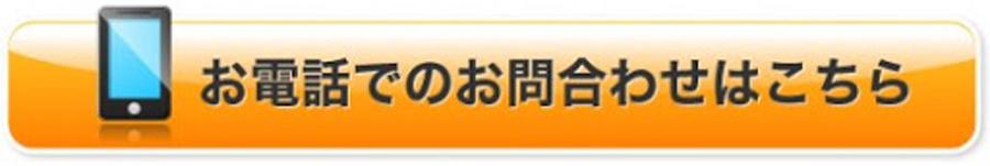 f:id:plusone-akashi:20200731120005j:plain